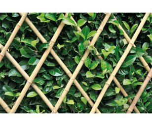 Ideali per il sostegno di piante rampicanti.