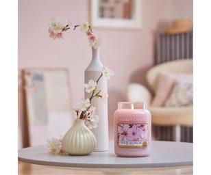 che colora ogni stanza di rosa e felicità.