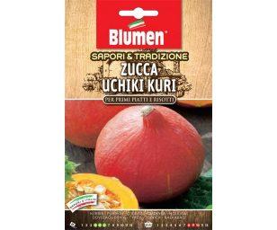 Zucca uchiki kuri.