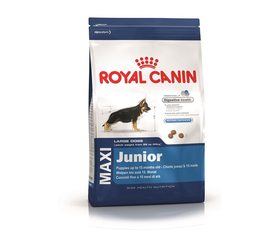 royal canin dog maxi junior 4 kg. Black Bedroom Furniture Sets. Home Design Ideas