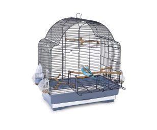 I vostri cocoriti e uccelli esotici potranno trovare piccoli momenti di libertà grazie alla gabbia elisa.