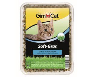 Soft-gras gimpet è un'erba che germoglia assai rapidamente