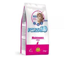 Forza10 maintenance al pesce è uno speciale alimento di mantenimento per gatti adulti