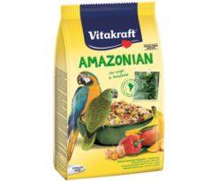 Amazonian pappagalli.