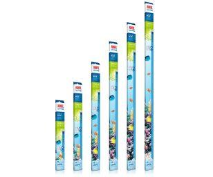 La juwel high-lite blue è stata sviluppata specificamente per simulare le condizioni di illuminazione della barriera corallina a circa 6m di profondità.