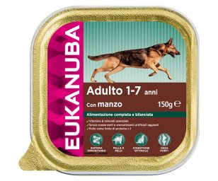 Umido cibo per cani