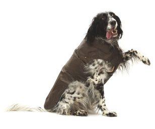 Cappotto impermeabile marrone con fodera in pile rimovibile per un utilizzo in tutte le stagioni. Dispone di foro per il guinzaglio