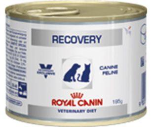 Recovery è un alimento dietetico completo per cani e gatti indicato per favorire la ripresa nutrizionale durante la convalescenza o in caso di lipidosi epatica felina.