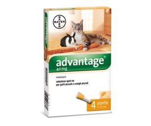 Advantage® soluzione spot-on per gatti piccoli e conigli piccoli.