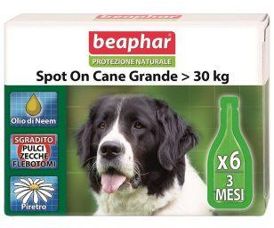 Lo Spot On Protezione Naturale Beaphar per cani di taglia grande utilizza solo essenze ed oli vegetali davvero efficaci contro parassiti ed insetti ed al contempo delicati con il mantello e la cute dell'animale.