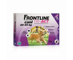 Frontline tri act uccidere le pulci
