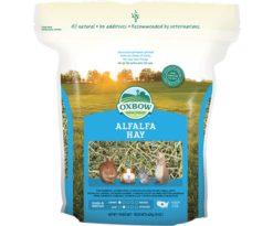 Alfalfa hay è un fieno eccezionale per gli animali giovani. Ha un contenuto di proteine grezze