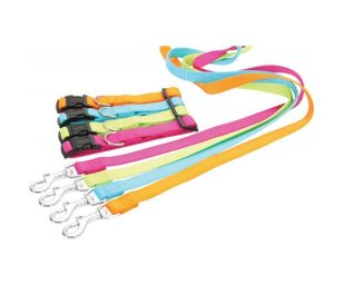 Questo guinzaglio vi sedurrà con i suoi colori acidulati et il suo materiale nylon.