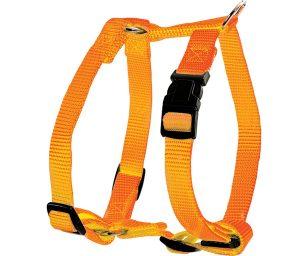 Questa imbragatura vi sedurrà con i suoi colori acidulati et il suo materiale nylon.
