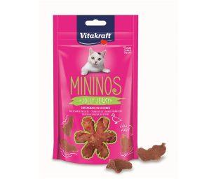 Snack per gatti di qualità top e gusto appetitoso. Ricette senza zucchero e senza cereali