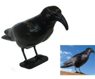 Spaventapasseri indispensabile per evitare i danni causati dagli uccelli.