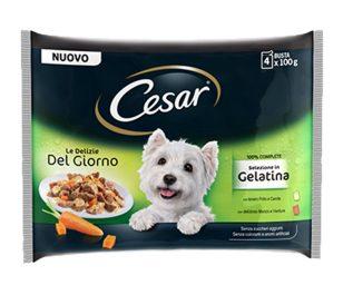 Cesar® Le Delizie del Giorno Multipack contiene 4 buste di due varietà di teneri bocconcini di pollo e manzo con verdure in gelatina