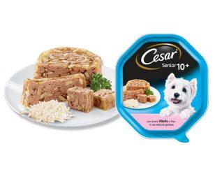 Senior 10+ è la linea di Cesar® dedicata specificatamente ai cagnolini che hanno superato i 10 anni di età.