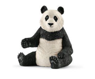 Femmina di panda gigante.