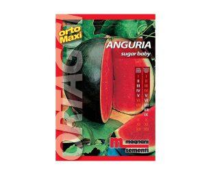 Anguria sugar baby è un frutto ovale di grosse dimensioni (9-10 kg)