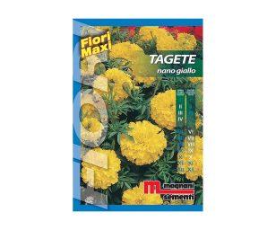 Tagete nano giallo è una pianta di facile coltivazione che si adatta ad ogni tipo di terreno.