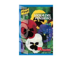 Viola del pensiero è una pianta biennale dal portamento nano dai caratteristici fiori giganti ideale per bordure.