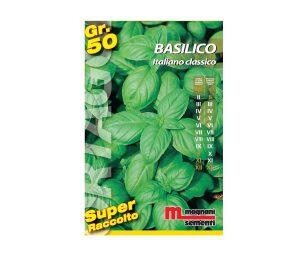 """Basilico italiano è una varietà della tipologia """"Genovese"""" con foglie ovali a cucchiaio di colore verde medio intensamente profumate."""