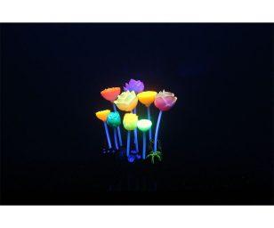 Aqua lumo fiori acquatici cm 9