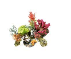 Coralli e piante su roccia cm 17x12