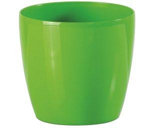 Vaso stars green cm 7.