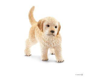 Golden retriever cucciolo.