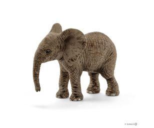 Cucciolo di elefante africano.