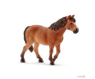 Giumenta dartmoor pony.