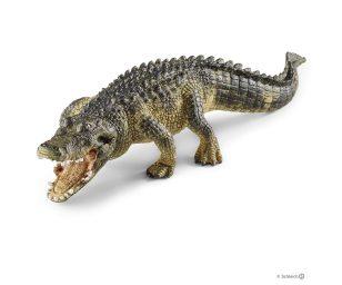 Alligatore.