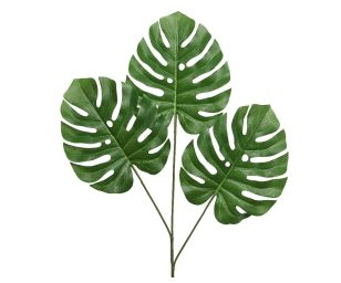 3 foglie monstera cm 2x47x76h.
