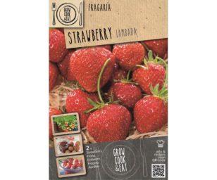 Strawberry lambada 2 pz.