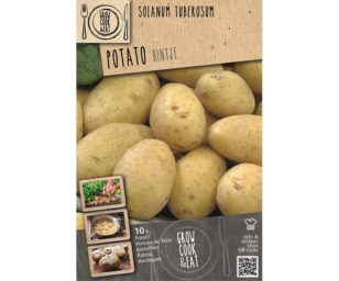 Seed-potato bintje 10 pz.