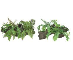 Mantovani decorazione tronco con piante m.