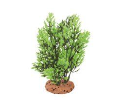 Mantovani pianta dekor verde vivo.