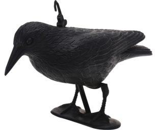 Corvo nero cm 35x19x13h.