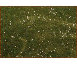 Carta cm 50x70 prato con muschio.