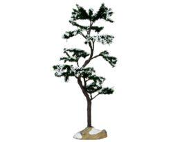 Marcescent tree