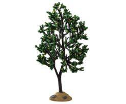 Alder tree.
