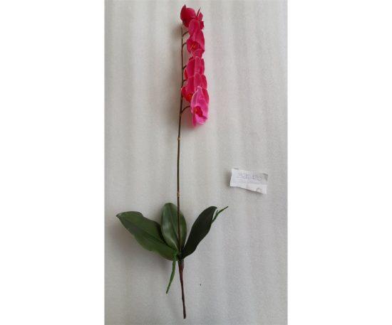 Orchidea Phalaenopsis Cm 73 Rosa.