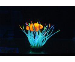 Aqua Lumo Anemone Con Pesce Pagliaccio Cm 5